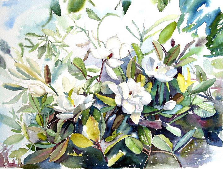 Magnolias - US Country Wildflowers, Art by Roxanne Shields