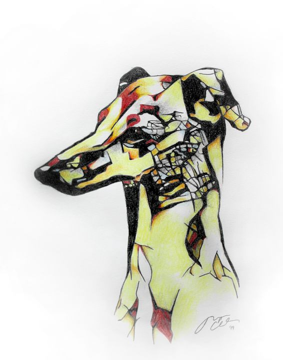 Geometric Italian Greyhound Profile - Morgyn Church