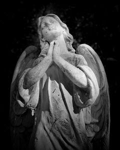Alta Mons Prayer