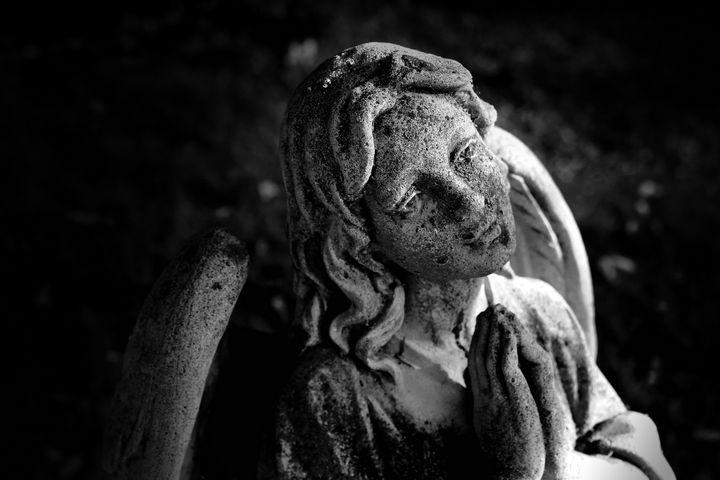 Dark Angel - Morgyn Church
