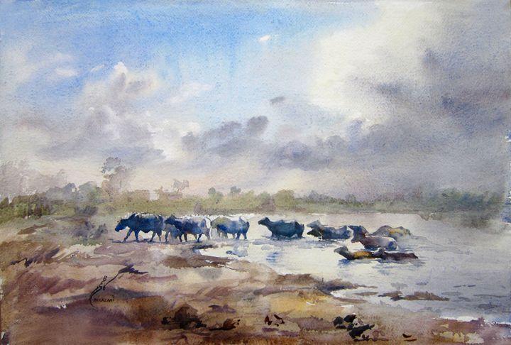 Ravi river Lahore by Muddassir Kazmi - M Kazmi