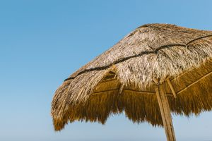 Palm roof umbrella