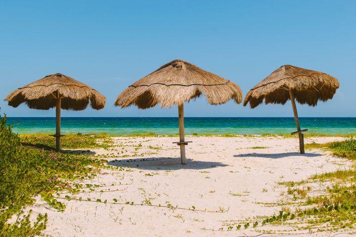 Beach - SFocil