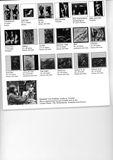 Professional catalogue (detail)