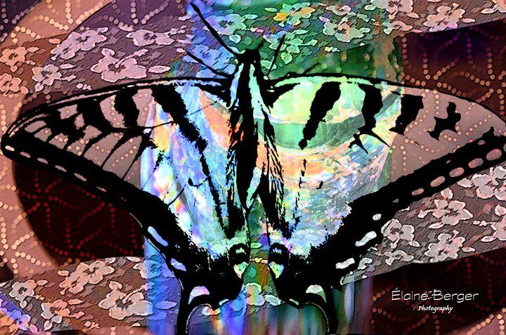 My Pet Butterfly - Elaine Berger