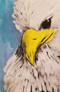 Eagle Eyes - Dani