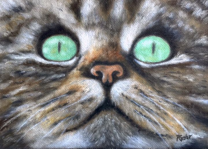 Cat Eyes - Dr Pat's Art