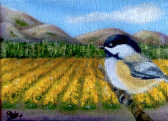Vineyard View - Dr Pat's Art