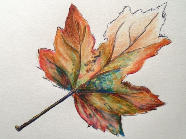 Fall Leaf Sketch - KM Studio