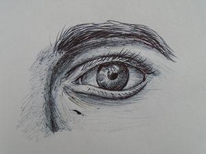 Eye Sketch