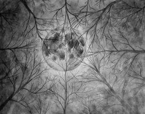 Lunar Focus
