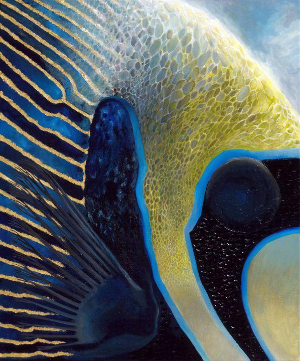 Emperor Angelfish - Lisa's Art Gallery