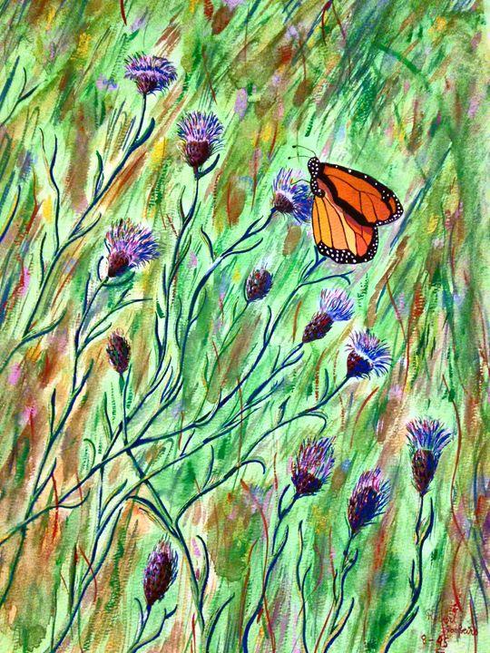 butterfly In A Field - Robert Rombeiro
