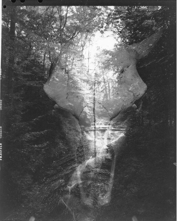 Skull and Stream - Audrey Lea Art