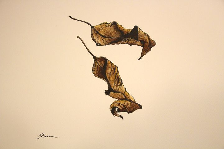 Fallen Leaves - Mark S Fine Art
