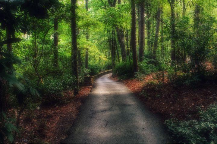 Trail to Heaven - Stephanie Crews