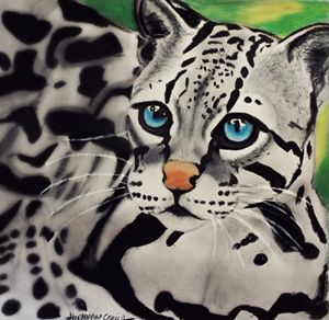 blue eyed ocelot