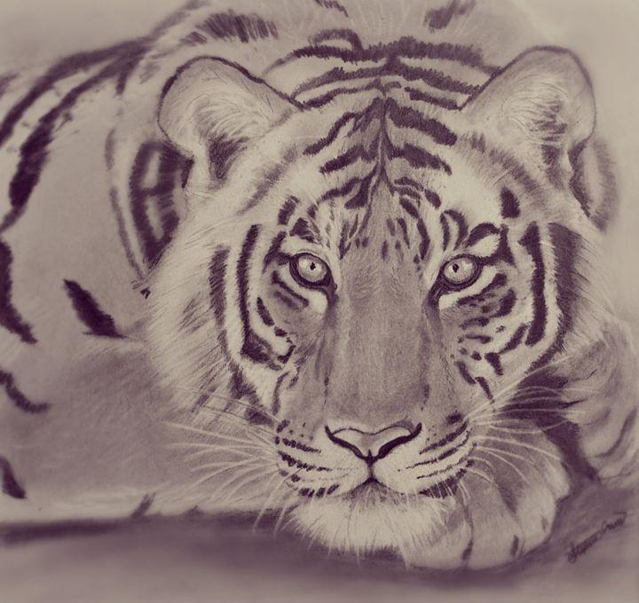 Tiger eyes - Stephanie Crews
