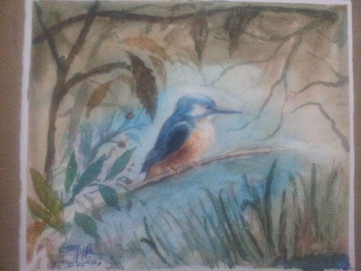 kingfisher - Raad Hosieni