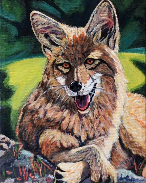 Smiling coyote - Rose Ananda Heart