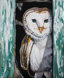 Barn Owl's Front Door
