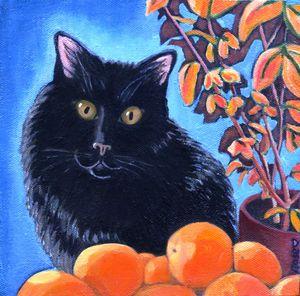 Feline Presence