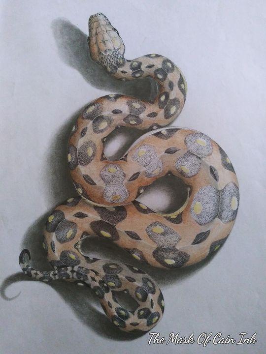 Snake - John Cain's Creations