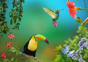 The joy of life. Tropics. - Souvenir