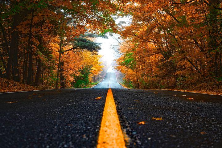 Autumn - FriendlyChimpArt