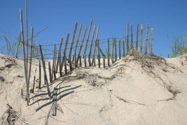 Sand Dune - Ceative Visions by TSW