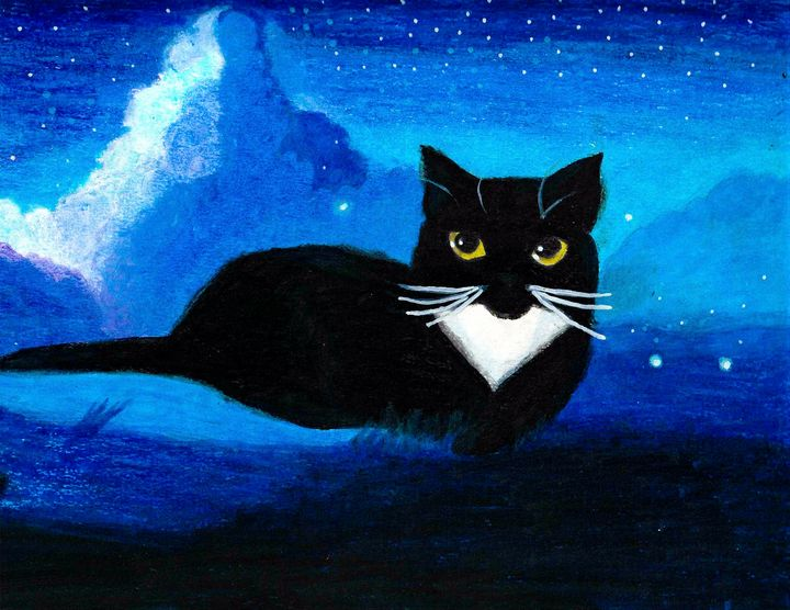 Black cat on starry night - Melanie N Creations