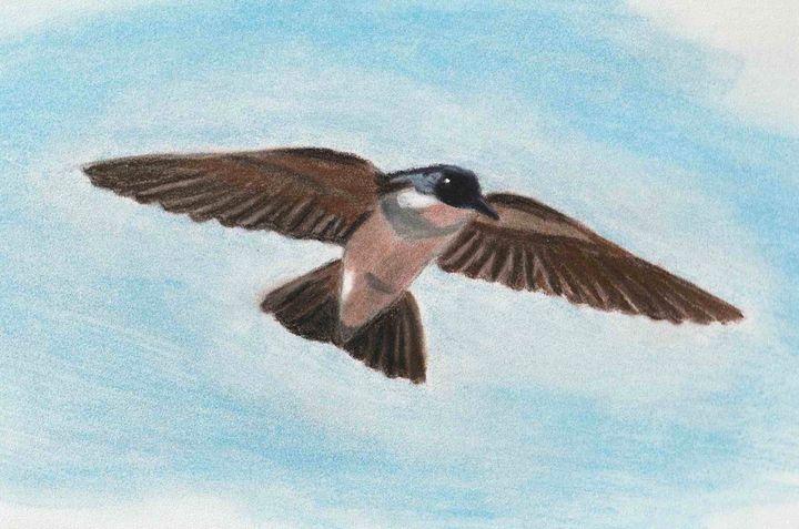 The swallow announcing spring - Melanie N Creations