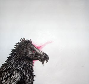 Bearded Vulture - Tiffany Asher - Art and Gallery
