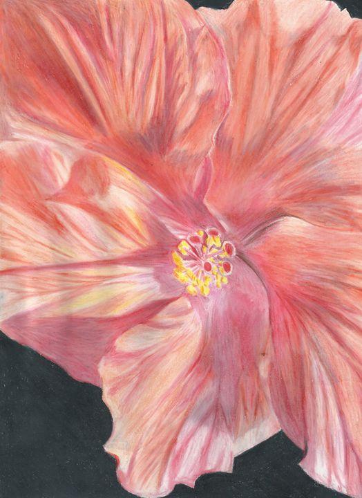 Happy Hibiscus - JessAndrade