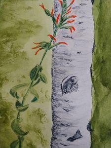 Aspen with Indian Paint Brush - Fallen Branch Designs