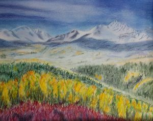 Colorado Rocky Mountain Landscape - Fallen Branch Designs