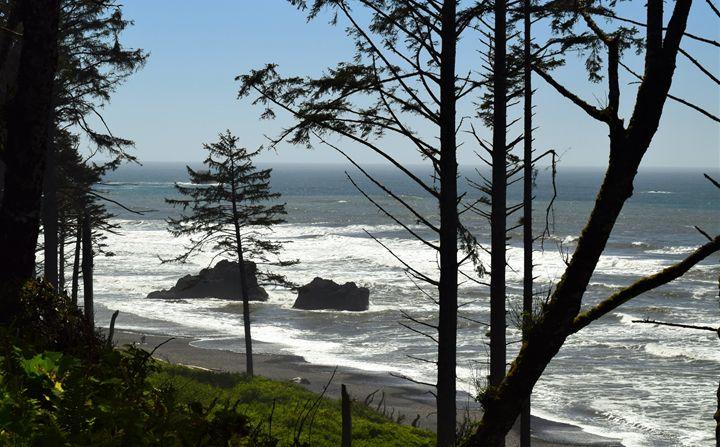 Ruby Beach, Washington - dizzeelizzee