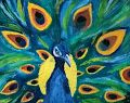 Peacock - Bella Campos
