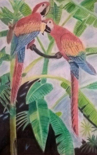 Parrots - Bella Campos
