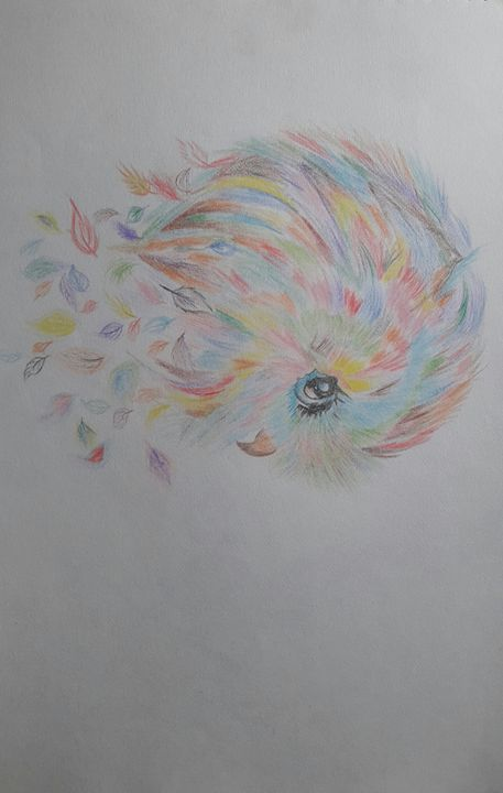 Colourful little bird - Art evolution