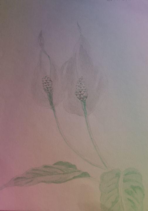 Flower in the Garden - Art evolution