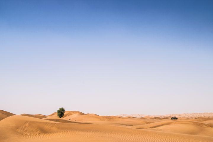 Alone - Oman Aladawi