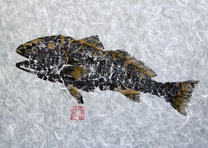 Redfish Golden with no Border - Adrienne Anastasia