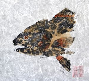 Redfish Head with no Border