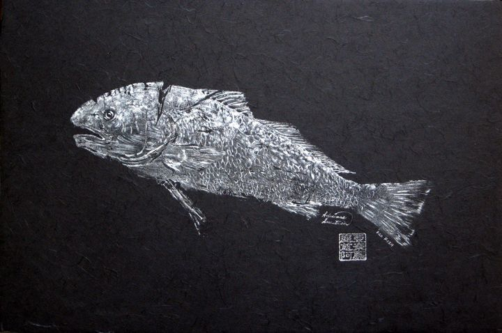 Redfish - Silver on Black Background - Adrienne Anastasia