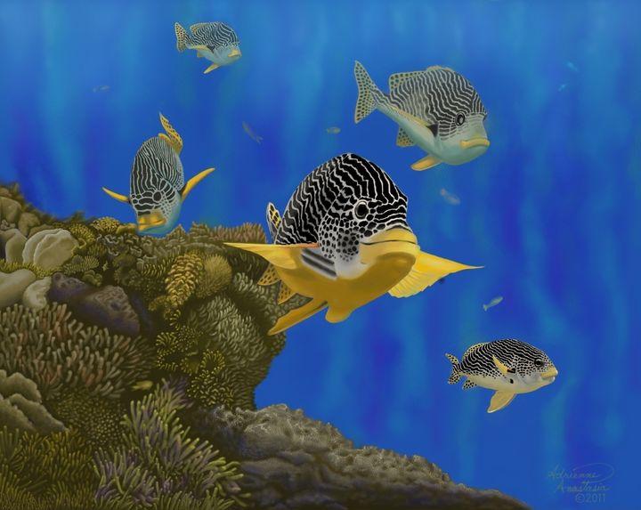 Cruisin' the Great Barrier Reef - Adrienne Anastasia