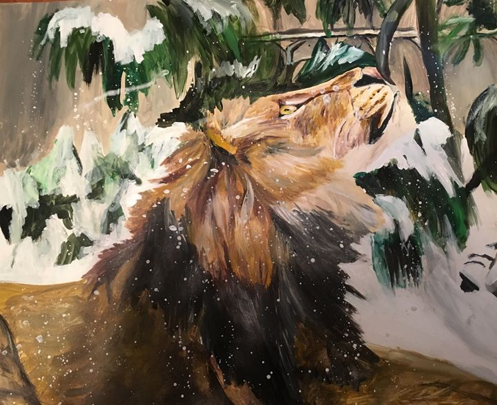 Lion in the snow - Bella Brooker