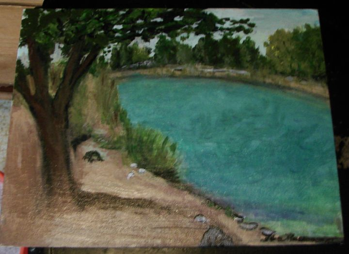 Tingley Beach in July - Creations by Flora