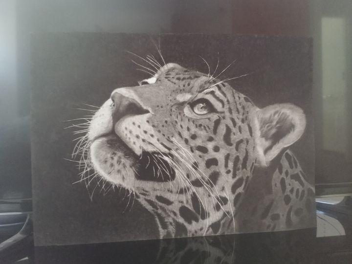The Leopard - Heath Gwaure