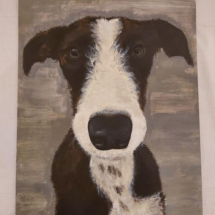Luna the dog - Charlie